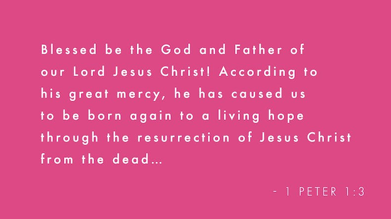 1 Peter 1:3 Bible verse on pink background