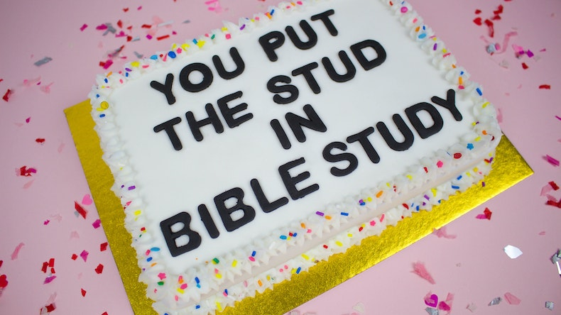 Make It You Put The Stud In Bible Study Cake Cheerfully Given