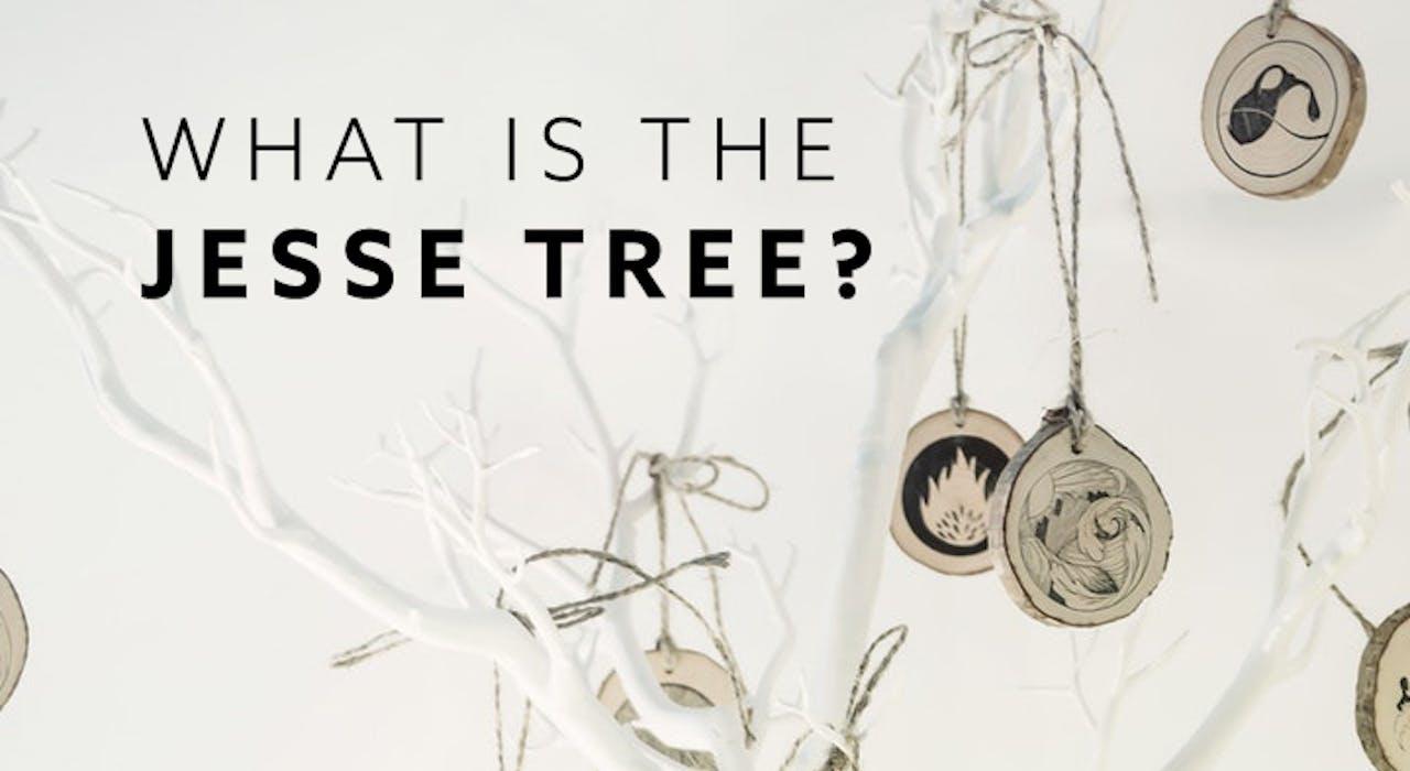 What is a Jesse Tree - Jesse Tree for Kids