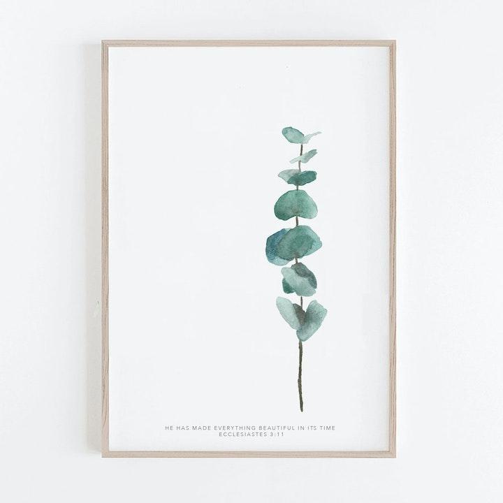 Botanical Baby Blue Eucalyptus Print - Ecclesiastes 3:11 - Christian Lettering Company