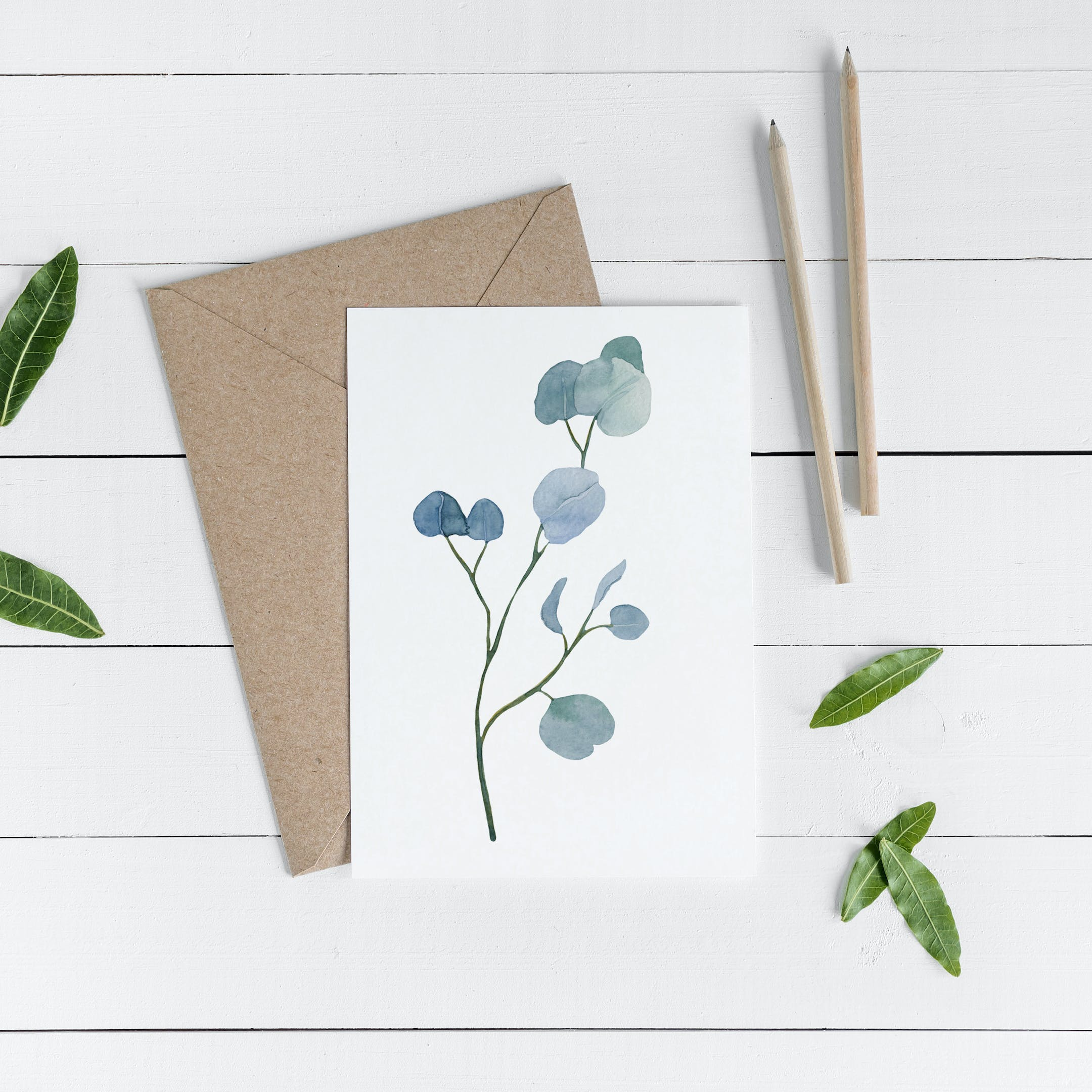 Botanical Occasional Greeting Card - Psalm 33:5 - Christian Lettering Company